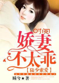 陆少索爱:娇妻,不太乖